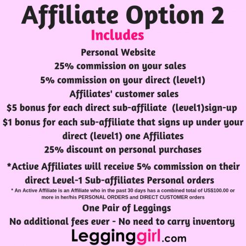 Affiliate Option 2